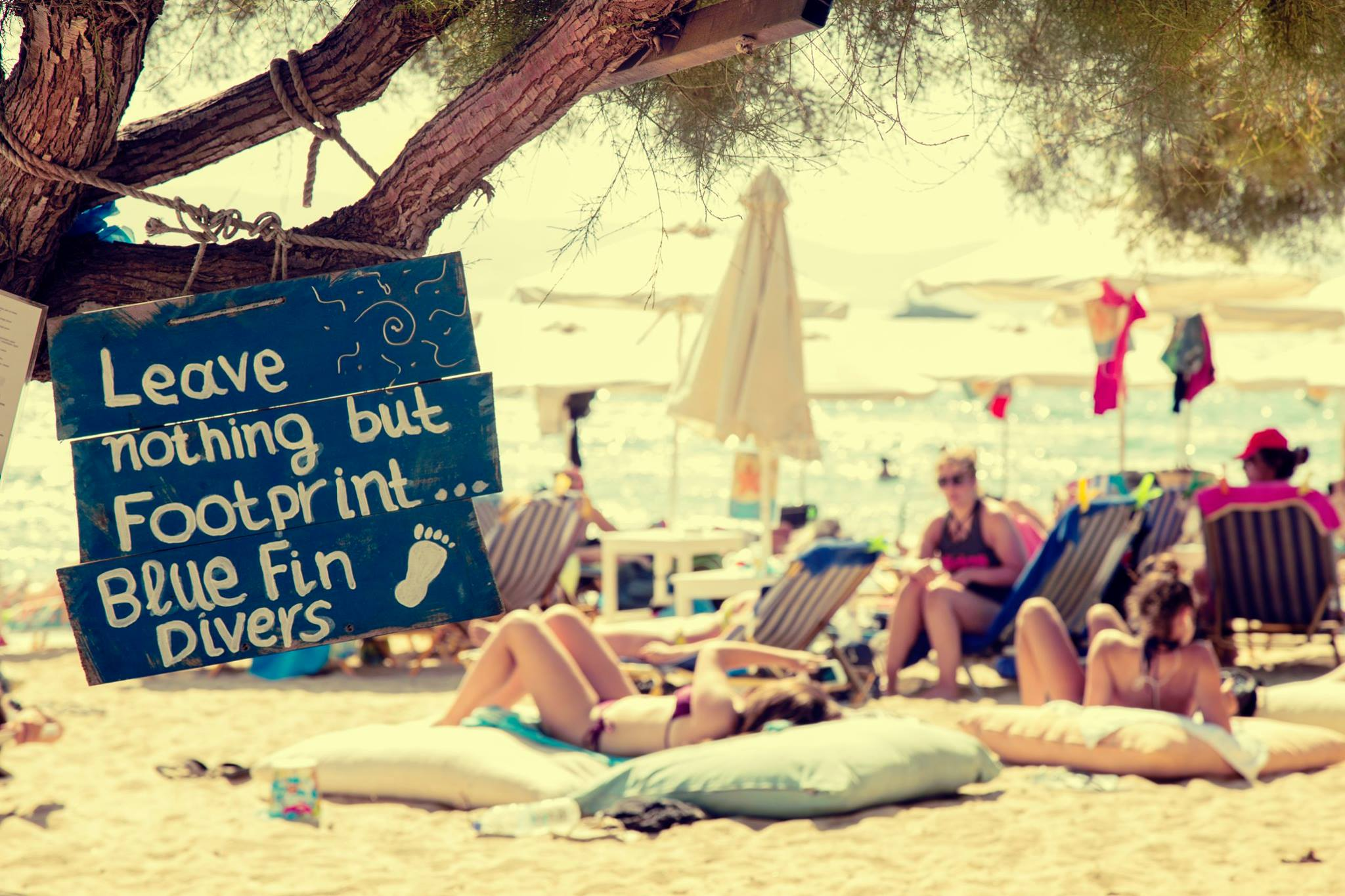 blue fin beach cafe 10