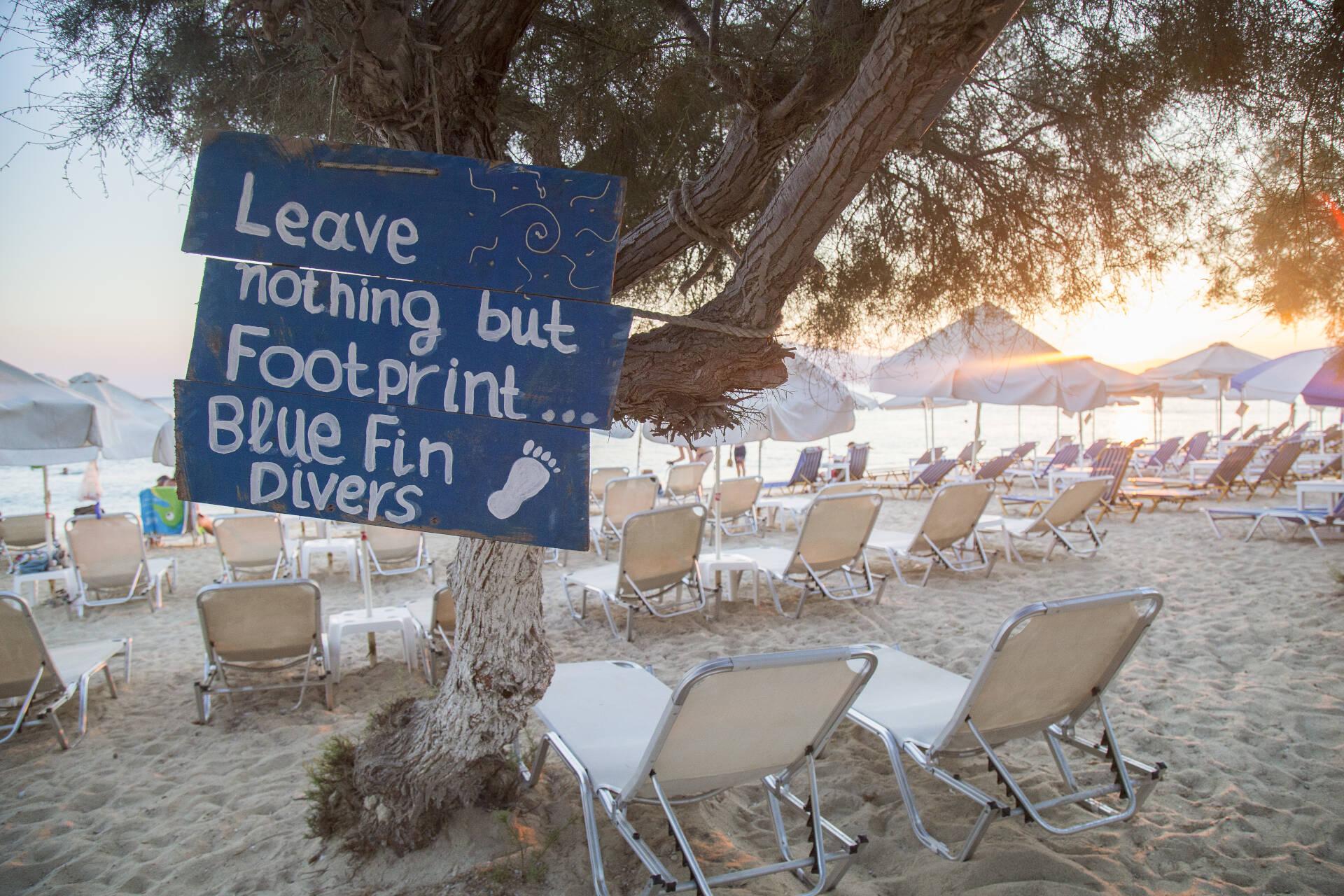 blue fin beach cafe 4